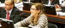 Dep. Dâmina apresenta seu parecer na Comissão de Seguridade Social e Família (CSSF) (Foto: Facebook- Divulgação)