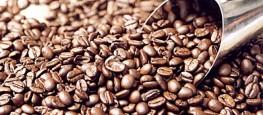 As amostras dos cafés concorrentes devem ser entregues pelos produtores mineiros nos escritórios da Emater; mais informações no site emater.mg.gov.br